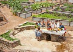 Gardening in Carlton Landing